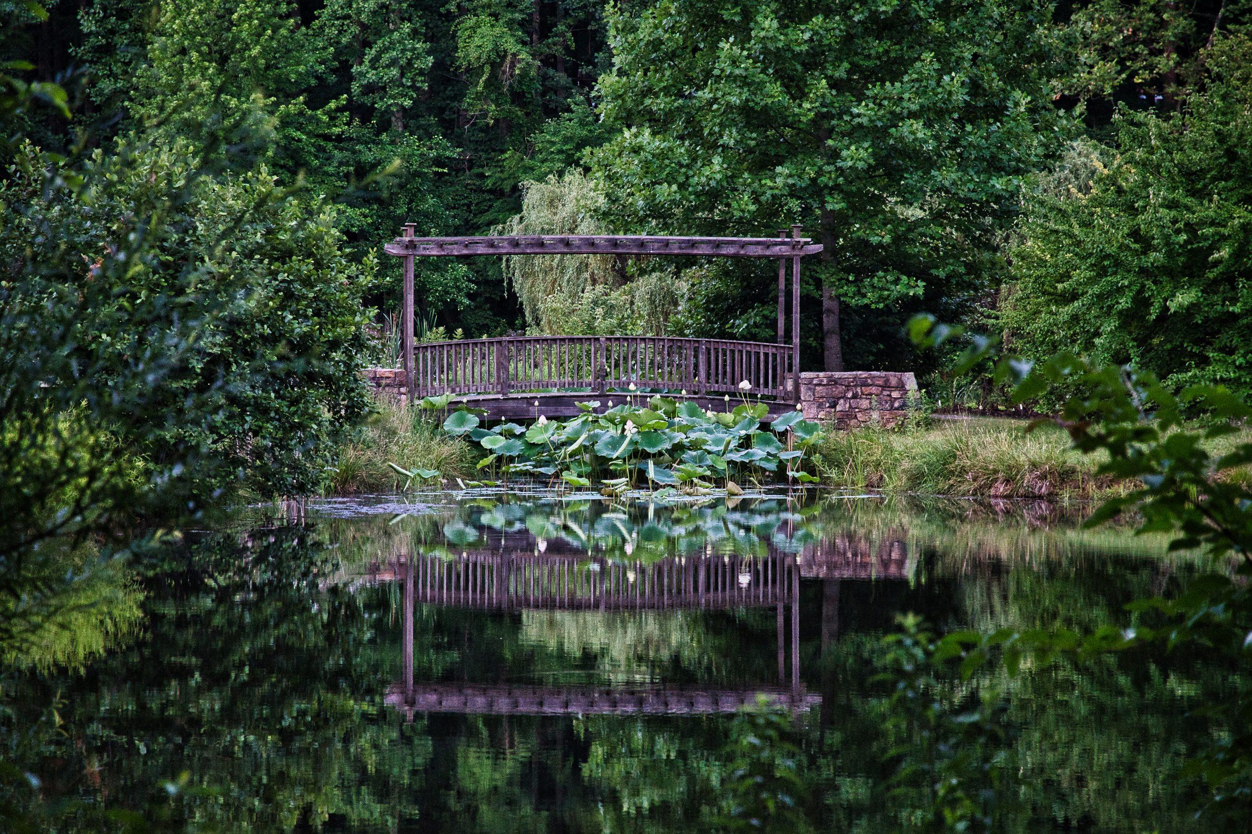 Meadowlark Gardens Vienna Virginia
